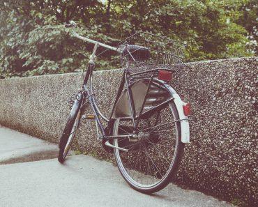 pegasus e bike test e bike ratgeber. Black Bedroom Furniture Sets. Home Design Ideas