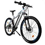 NCM Moscow Plus E-Bike Mountainbike, 250W, 48V...