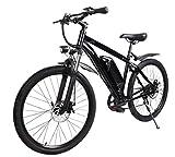 E-Bike E-Mountainbike 'Futura' 27,5/29 Zoll 250...