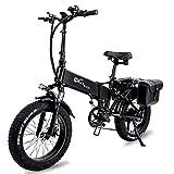 Klappbares E-Bike, 750 W Motor + 15Ah Versteckter...