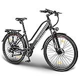 ESKUTE Elektrofahrrad 28 Zoll Pedelec E-Citybike...