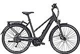 ZEG Pegasus Solero Evo 9 Damen Trapez E-Bike 2020,...