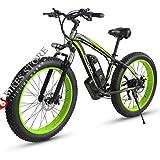 Elektrofahrrad E-Bike Mountainbike,...