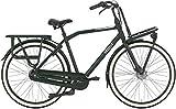 GAZELLE HeavyDutyNL T7 Nexus FL Trekking Bike 2020...